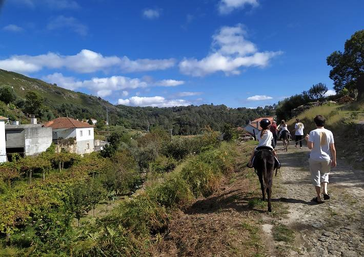 Walks with donkeys in rural Portugal, tours and donkey riding. Walking with a donkey through the portuguese countryside with your family and contact with nature!